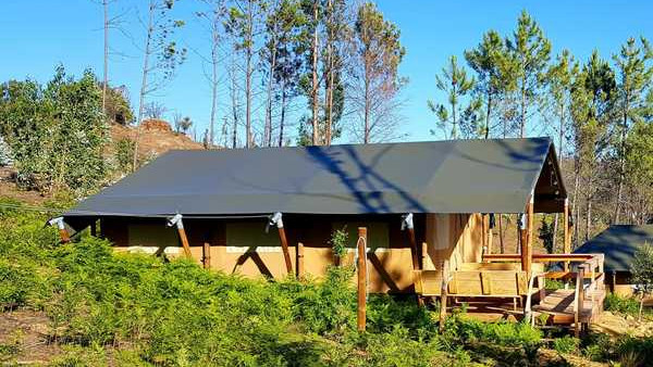 Tenda Safari 'Wood'